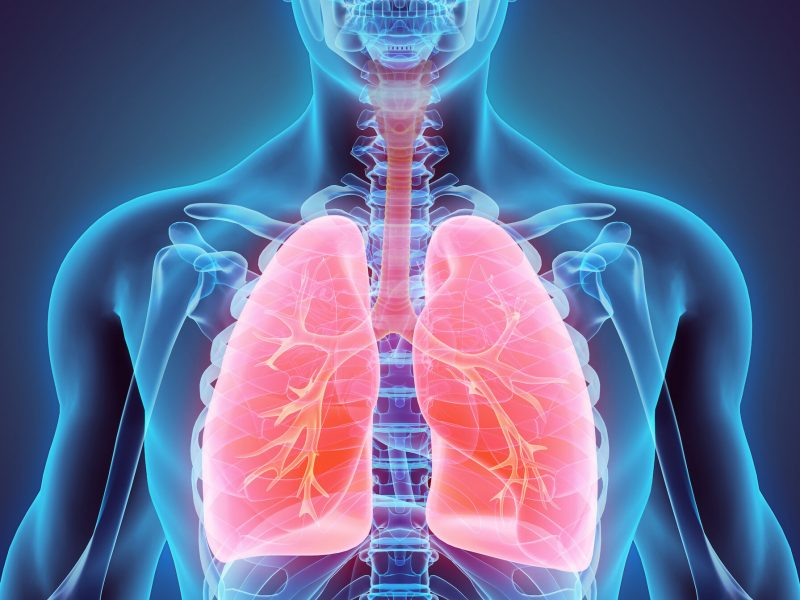 """Asztma férgek kezelése, 2 Replies to """"Asztmás paraziták kezelése"""""""
