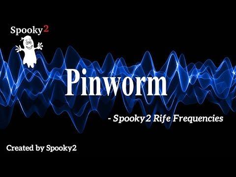 pinworms meghalt, hogy néznek ki Botkin parazitái
