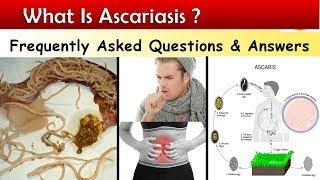 ascaris gyógyszer