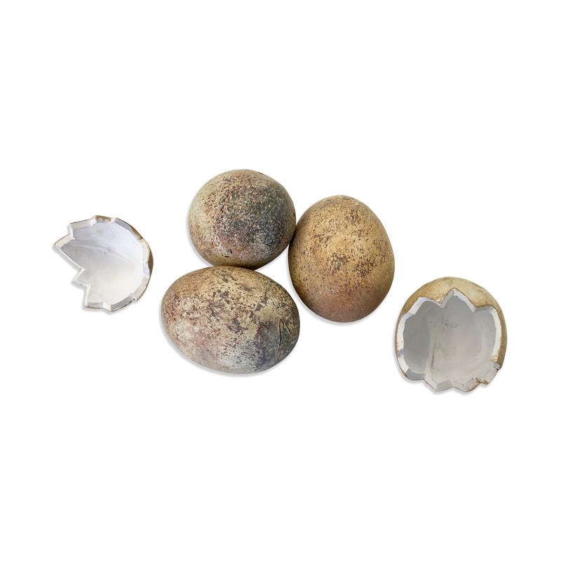 pinworm tojások feldolgozása