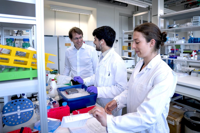 parazitákkal végzett laboratóriumi munka