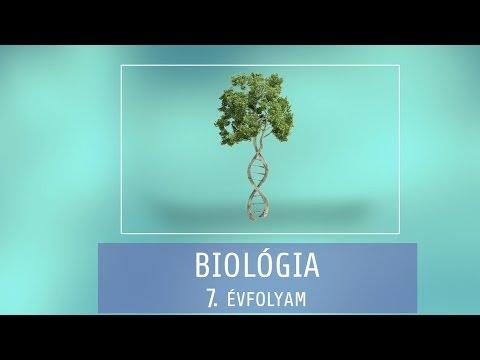 emberi körömféreg kifejlődése vagy szaporodása Gubarev helminták ismertek és ismeretlenek