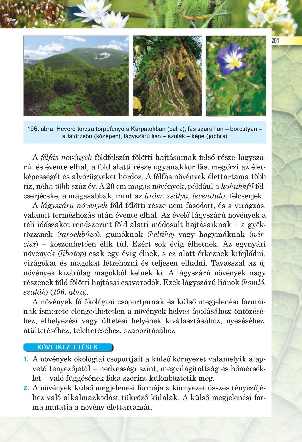 Ökológia | Digitális Tankönyvtár