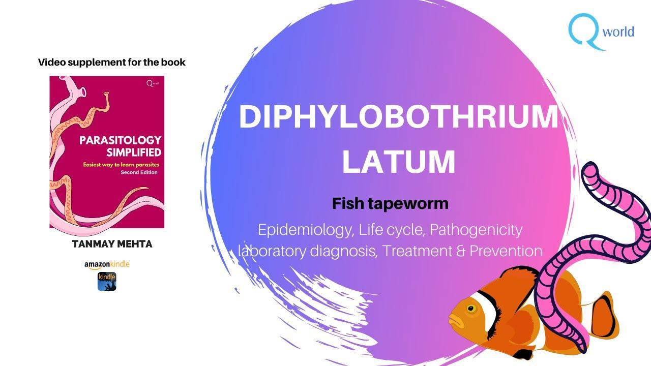 diphyllobothriasis mik a tünetek kezelése