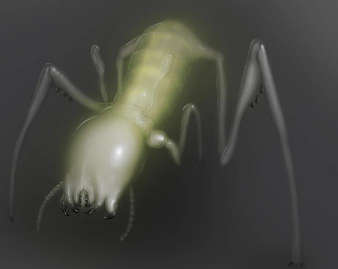 asztali parazita