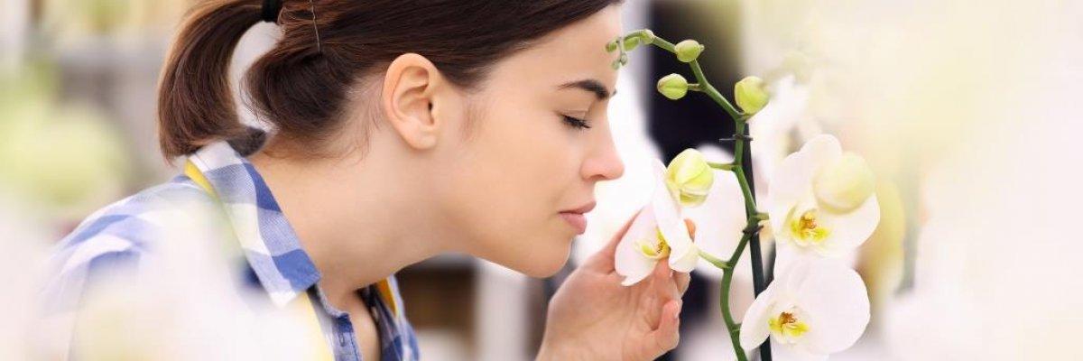 fejfájás és acetonszag a szájból hogyan lehet eltávolítani a férgek combjait