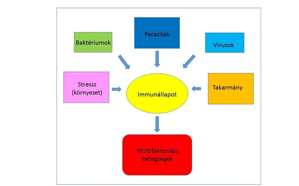 szirup opisthorchiasis és giardiasis esetén a férgek lázat okozhatnak