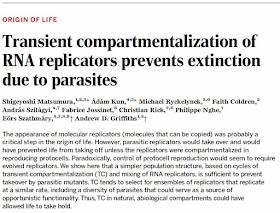 paraziták enzimek