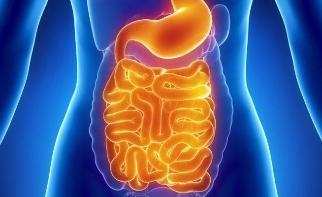 rothadt szag nyeléskor a giardiasis diagnosztizálható