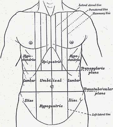 fájdalom a jobb hypochondriumban módszerek a paraziták székletének vizsgálatára